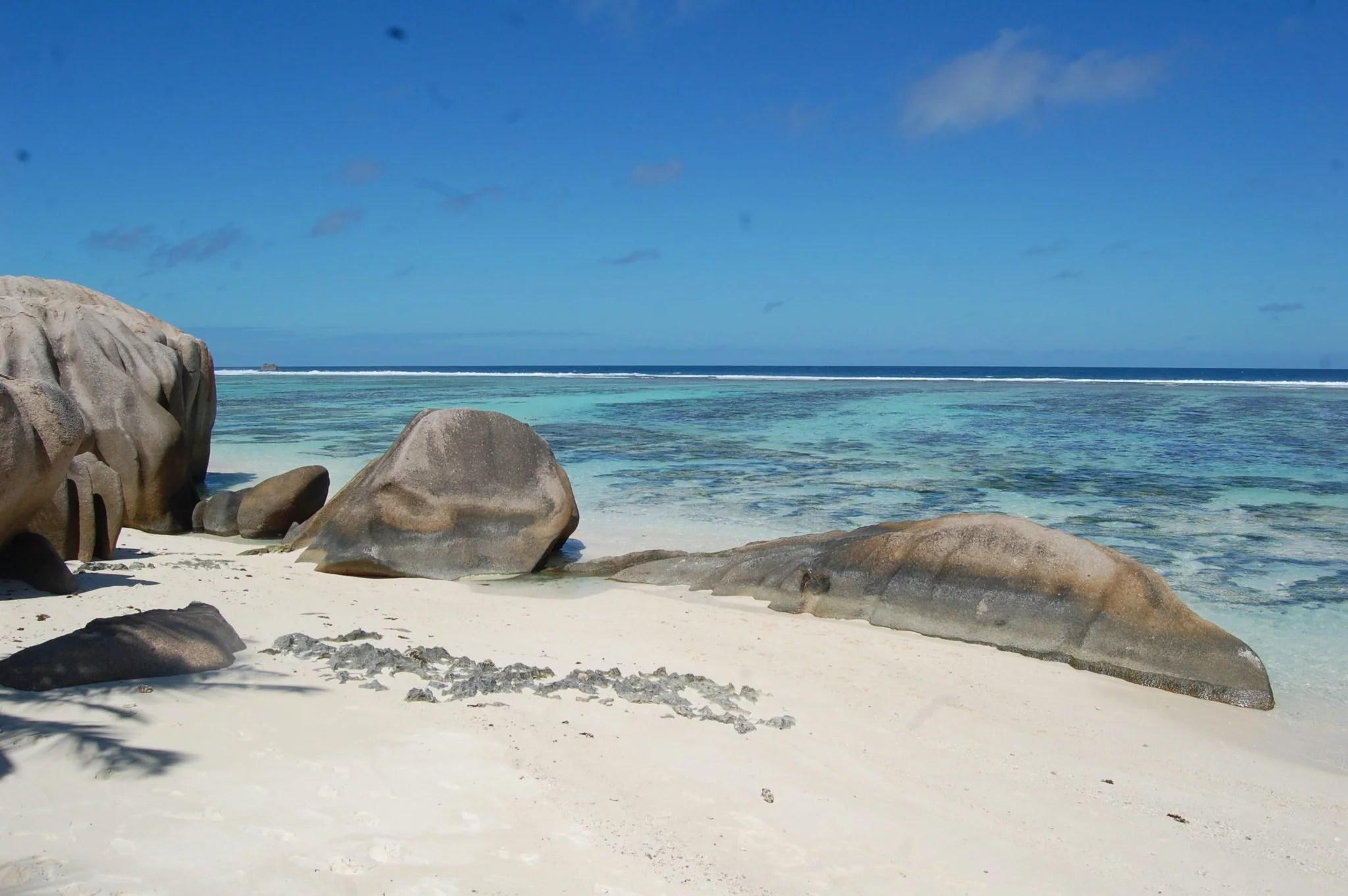 Mes bons plans restos aux Seychelles !