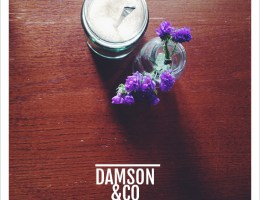damson-and-co-mademoiselle-stef-1