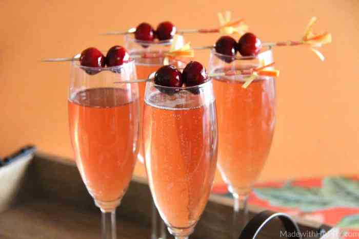 Cranberry Watermelon Champagne Cocktail | Holiday Cocktails | Cranberry Cocktails | Champagne Cocktails | www.madewithhappy.com | #MixedWithTrop #ad