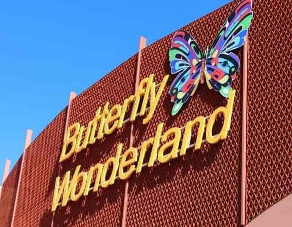 Butterfly Wonderland Scottsdale