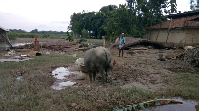 Helping Nepal Flood Survivors: My Diary