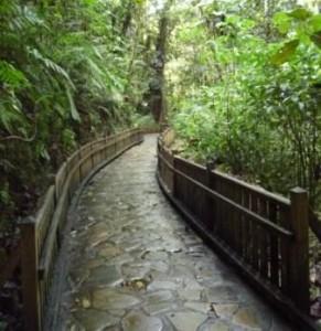 Le chemin d'accès