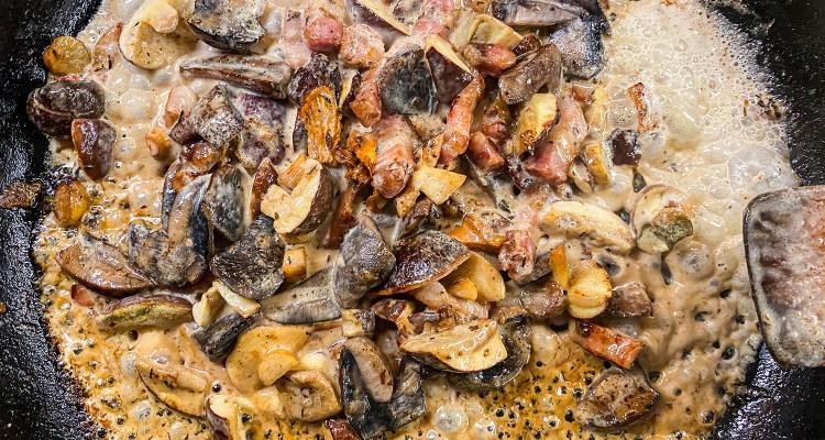 Flødestuvede svampe