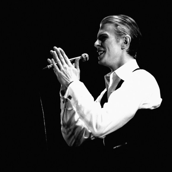 Bowie by Auliac