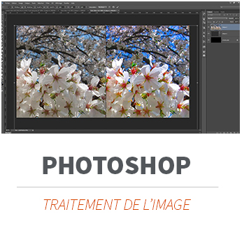 Formation PAO et Photoshop à Limoges et partout en France