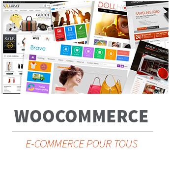 Formation WOOCOMMERCE, créer un site marchand, le E-commerce simple votre boutique en-ligne. Formation à Limoges et partout en France