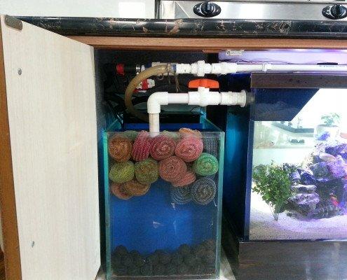 aquarium filtrations in india
