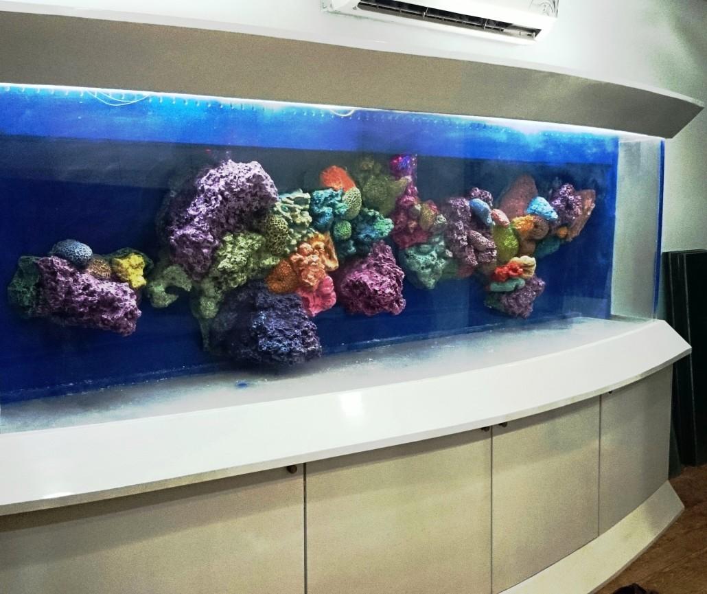 Coral reef Aquarium in India