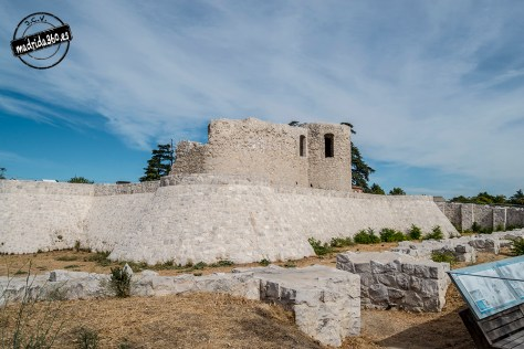 CastilloBarajas0160