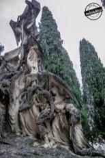SacramentalSan Isidro0068