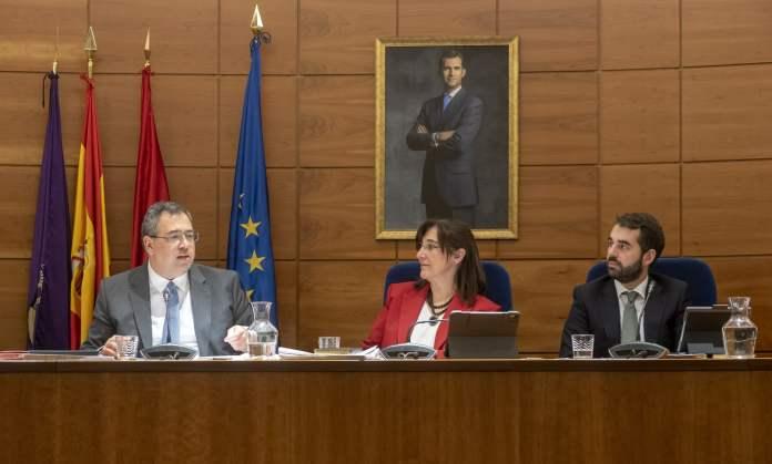 Pleno Ayuntamiento de Pozuelo