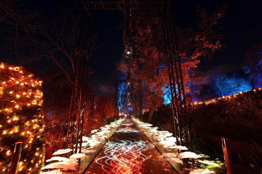 La luz navideña enciende el Jardín Botánico 3