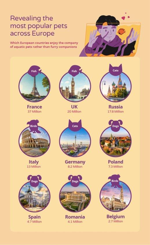 Madrid, una de las mejores ciudades europeas para tener mascotas 2