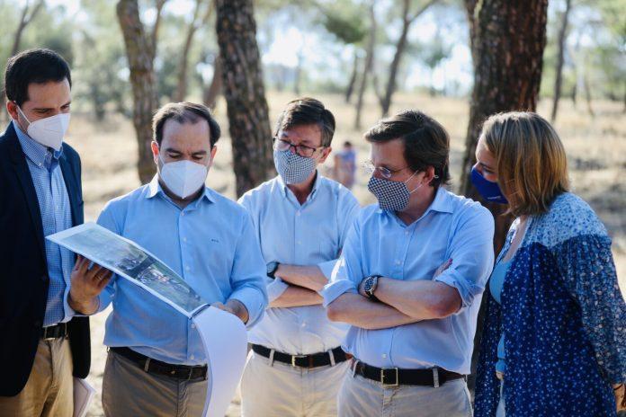 Almeida anuncia la mayor plantación de árboles de la historia 1