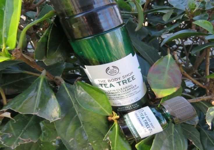 arbol de te limpiadora foaming gel aceite de arbol de te the body shop review