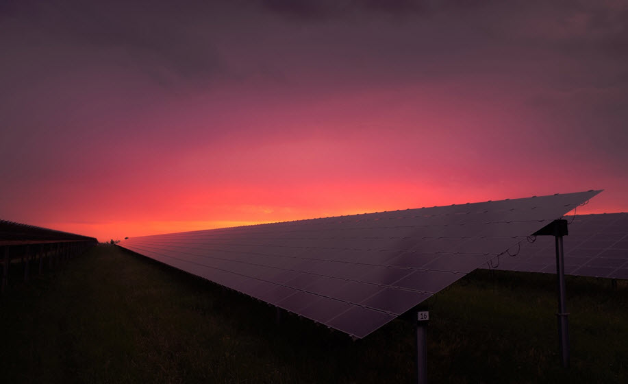 Solar or Fuel Generators: Which One is Best for You?