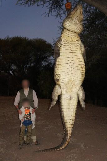2019-Crocodile-DSC01596-pxl