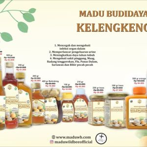 madu kelengkeng willd bee