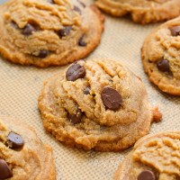 Flourless Peanut Butter Chocolate Chip Cookies (keto + low carb)