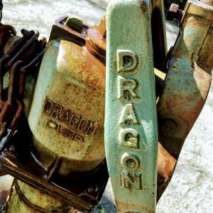 Dragon pump
