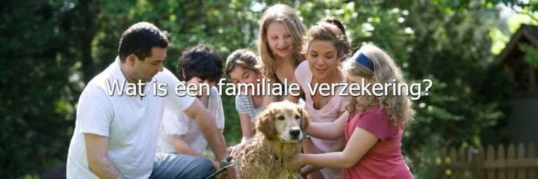 familiale, verzekering, gezin, familie, priveleven, verzekering, Maes Group, verzekeringen, Diest, online, verzekeringsmakelaar