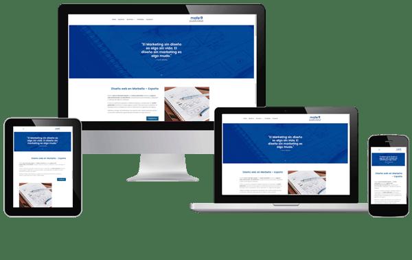diseño web profesional Marbella España