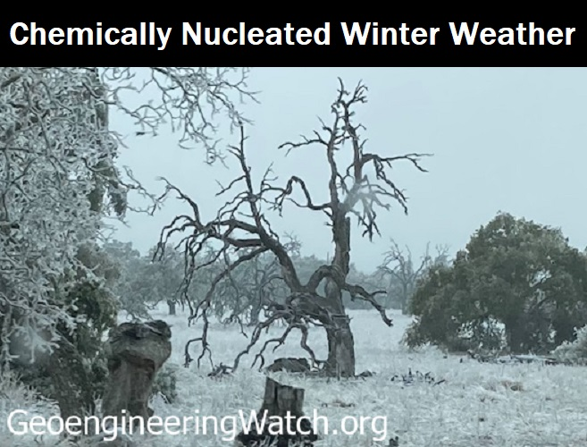Chemically Nucleated Winter Weather: Are Texas and Other States Victims of Climate Engineering Operations?