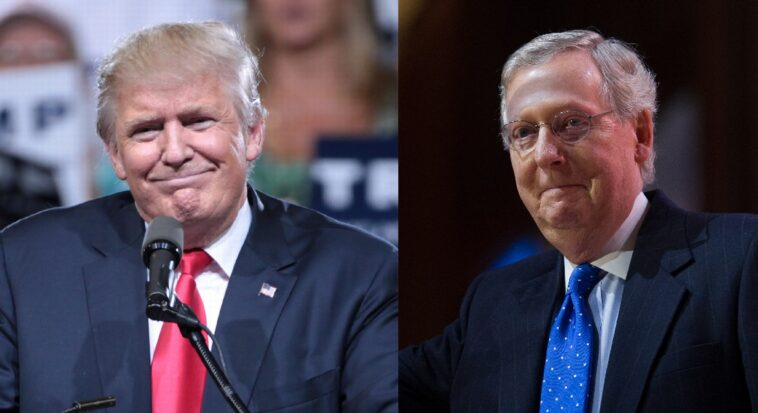 McConnell: I Would Support Trump If He Was The 2024 Republican Nominee…