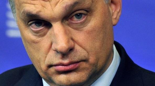 Ungern – det bästa landet i världen om man är Sverigedemokrat