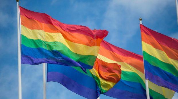 Därför hatar Sverigedemokrater regnbågsflaggan