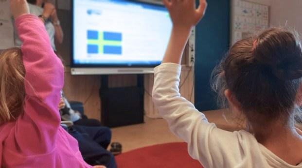 Ge Sverigedemokraterna makt över skolan!