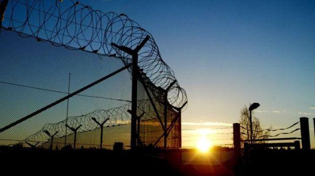 Färre fängelsestraff