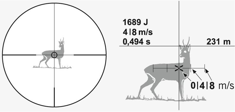 Swarovski DS II