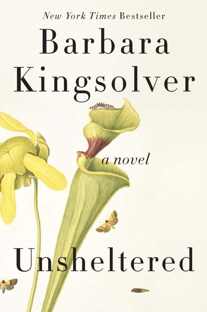 unsheltered book cover design