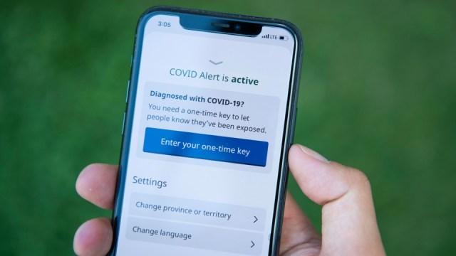 ¿La COVID Alert en Canadá fue un acierto o un error?