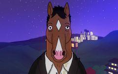Bojack Horseman - MagaZinema