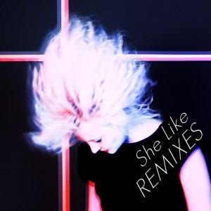 Cover remix S.R. Krebs