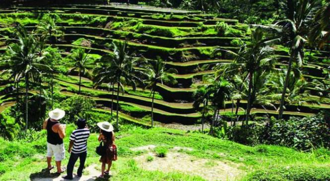 Desa Wisata Candirejo Magelang