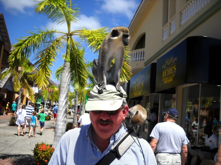 The monkey was complicit in scamming tourists. His partner/owner would walk up to unsuspecting tourists, place the monkey on their head or shoulder, take your picture and then demand $10 to remove the monkey. Same principle as prostitution: You don't pay a hooker to come, you pay her to leave.