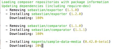 Magento2 Sample data Installazione