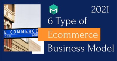 6 Types Of Ecommerce Business Model In 2021