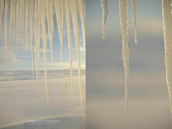 winter scenes, icicles