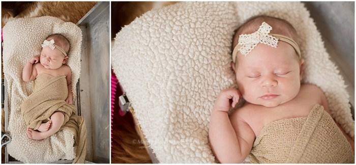 2018,Baby O,lifestyle newborn,studio newborn,