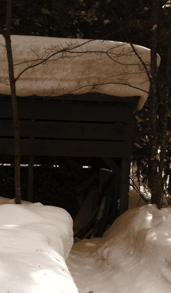 2014 jan 28 woodshed