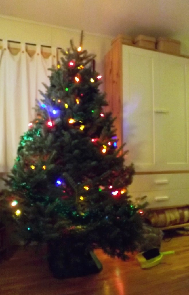 Christmas tree in the living room.