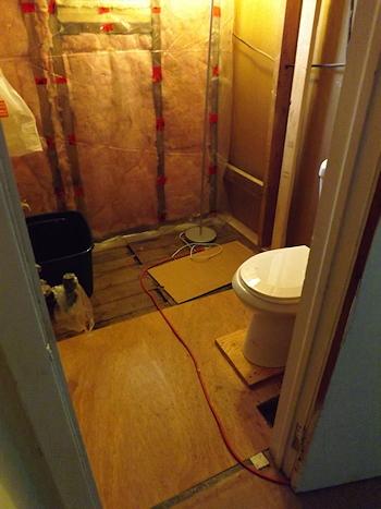 DSCF3250 bathroom Sept 1
