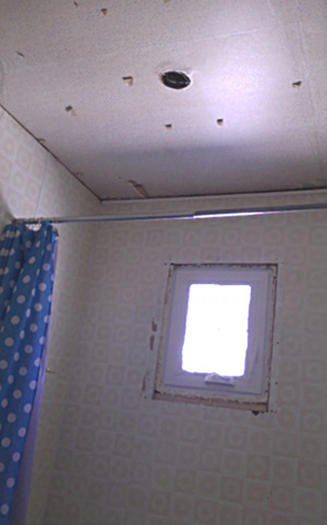 Bathroom ceiling tiles removed
