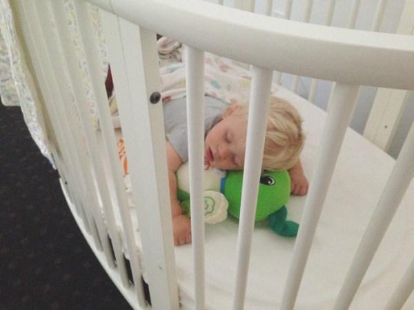 maxwell sleeping maggie whitley