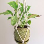 How to make a macremé plant holder.