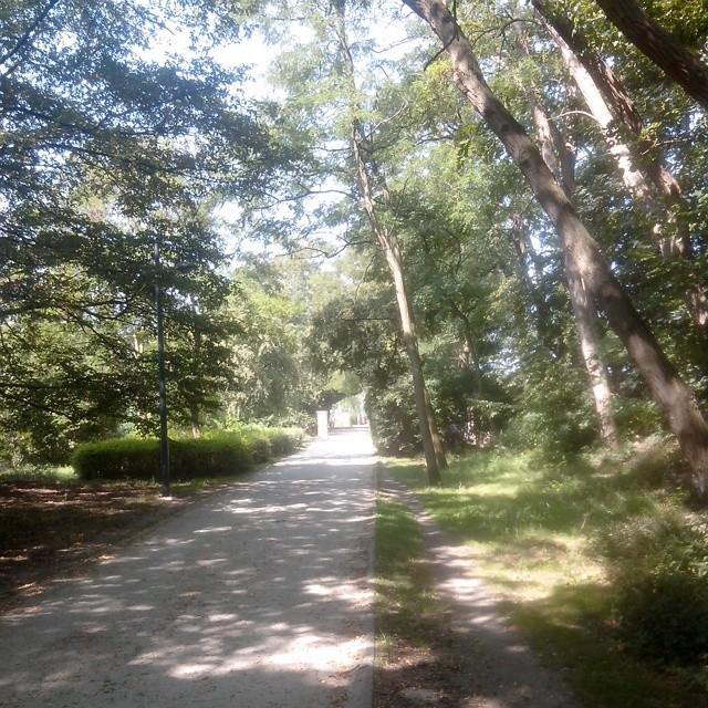 Promenade verte - sortie running en juillet 2014